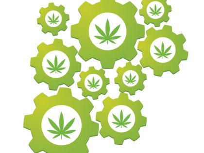 IT Struggles of the Legal Marijuana Industry